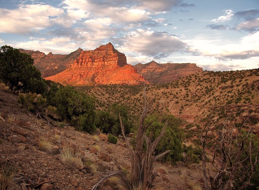 Unearthing History in Range Creek Canyon