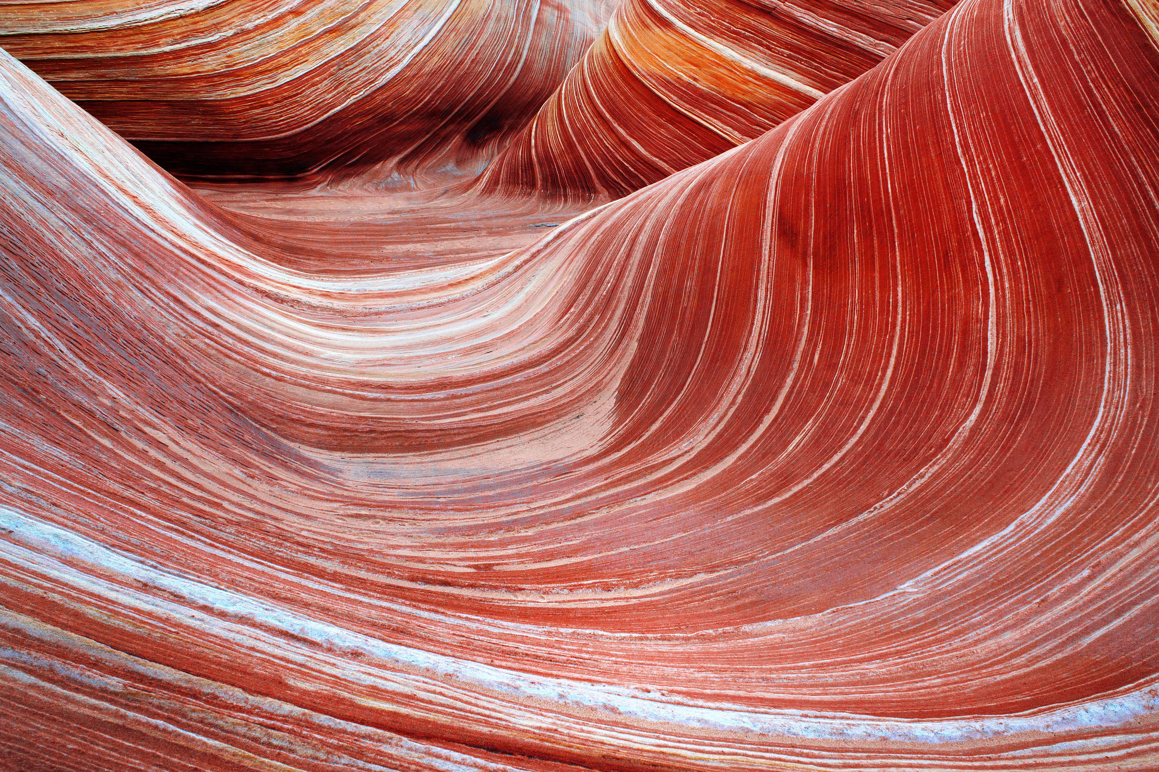 The Wave and North Coyote Buttes